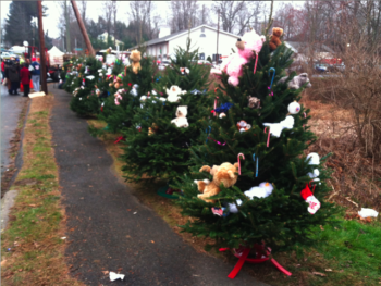 Christmas Tree Memorial at Sandy Hook Elementary, one for each person who was killed | Photo: Don Champion, 7NEWS
