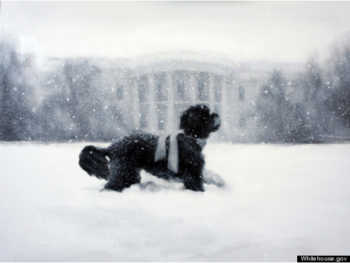 White House Christmas Card 2012 | Painting by Larassa Kabel