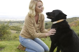 Katherine Heigl's Foundation All About Animals--Jason Debus Heigl Foundation