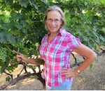 Kathryn Gould, one of the first women venture capitalists shown with her grapes at her vineyard