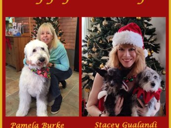Happy Holidays from The Women's Eye: Pamela Burke with her dog, Toni, and Stacey Gualandi with her dogs, Wally and Bobo