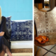Linda Hamilton, founder of Nomad Chic Boutique | Photos from Linda Hamilton